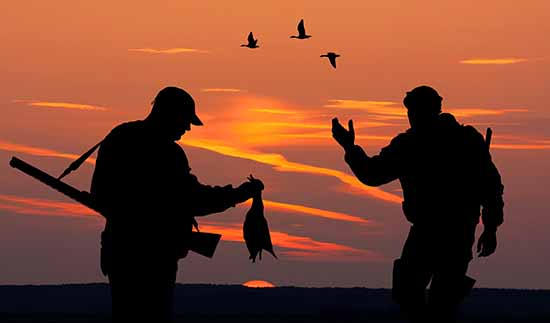 Duck season wait continues