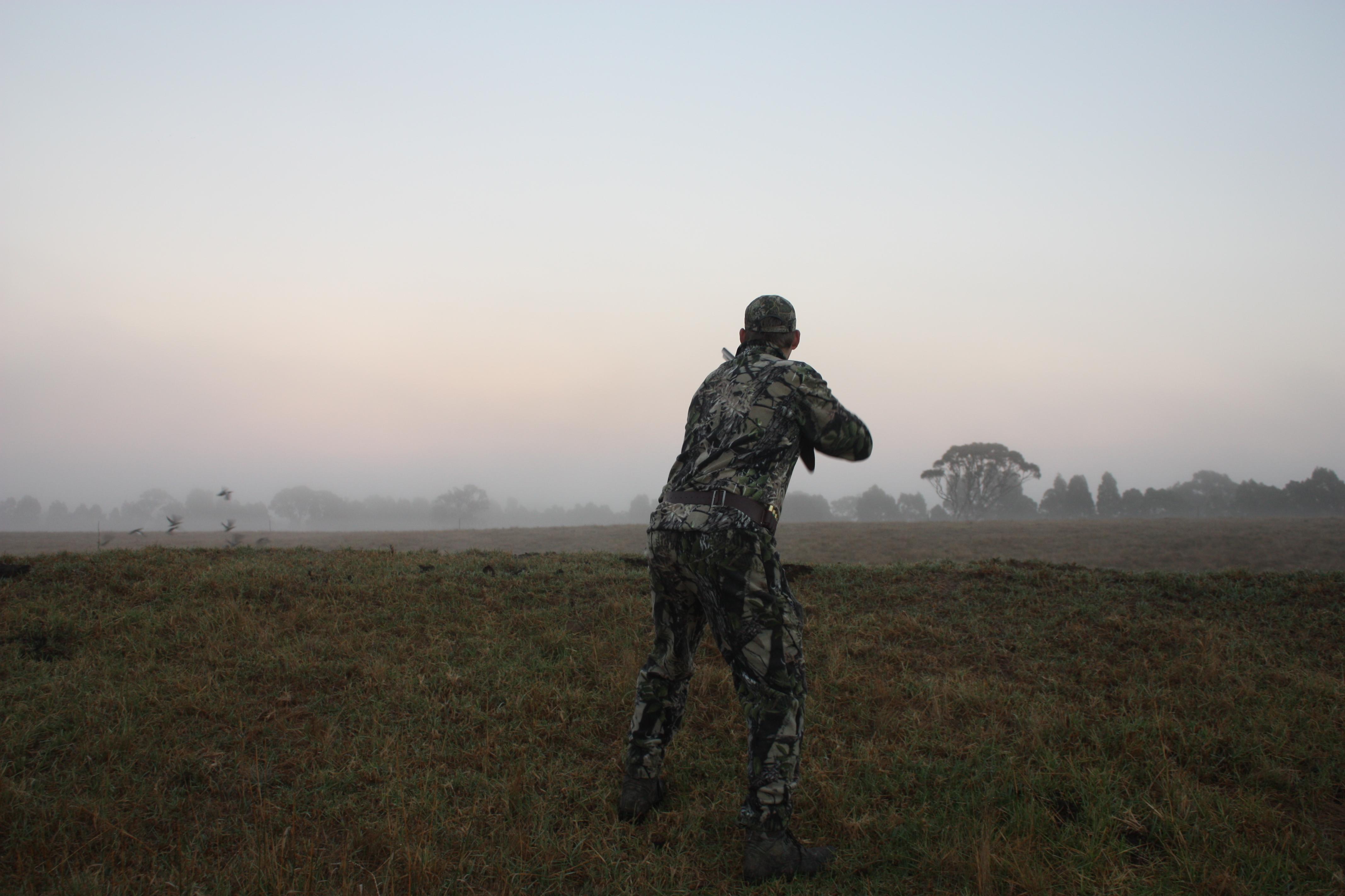 Wetlands reopening for duck season