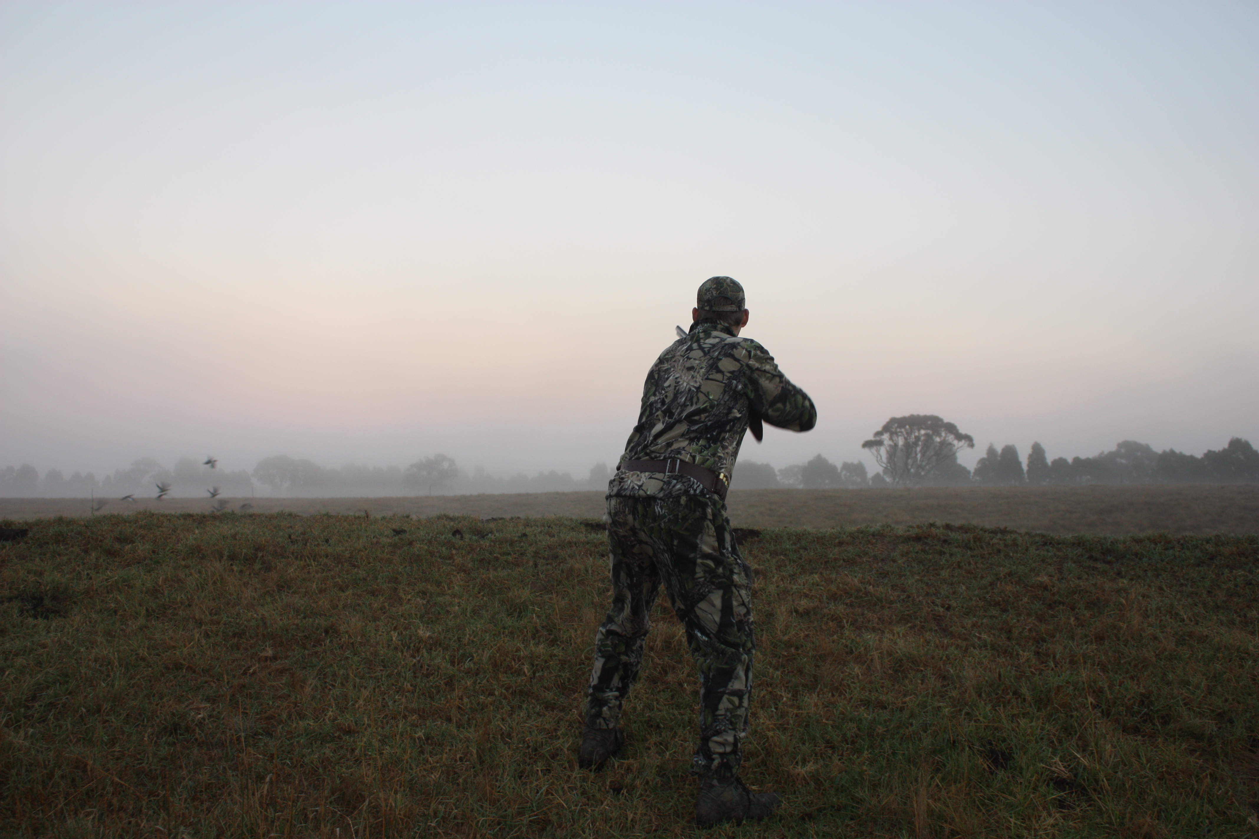 More Restrictions Placed on Duck Hunting in 2020