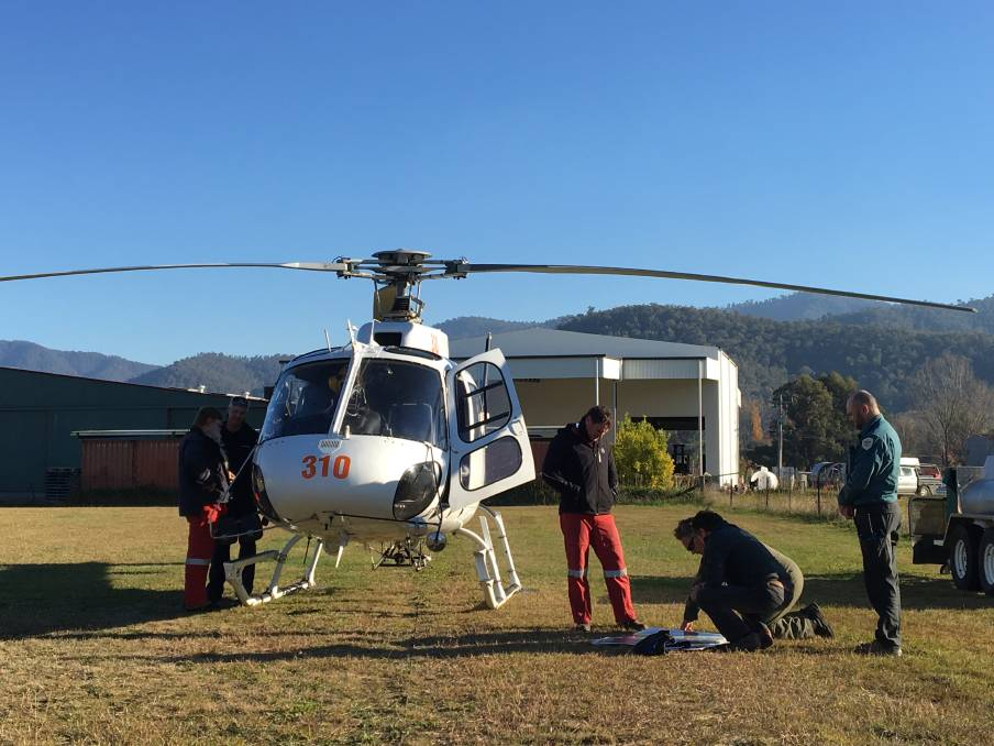 Grampians aerial cull will rob hunters of opportunity