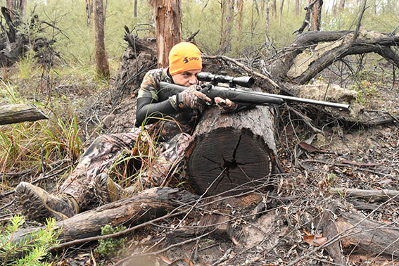 SSAA Victoria gets clarification on public land hunting legalities